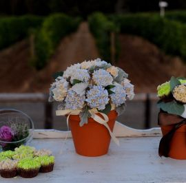 Potted Hydranga cupcakes 2